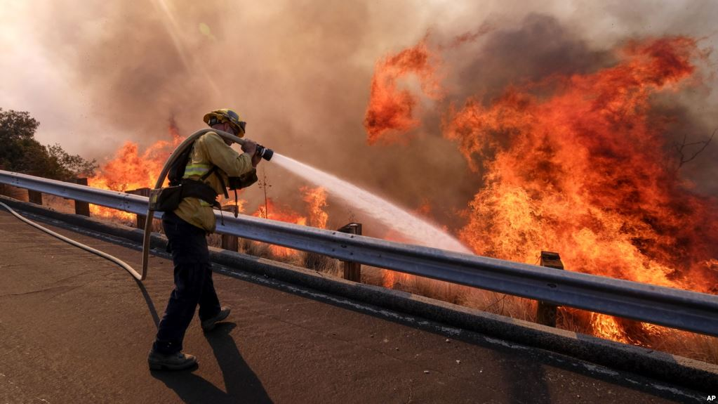 Different Types of Insurance for Fire Accidents